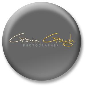 gavin-button