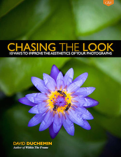 chasing-the-look-david-duchemin