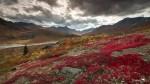 20130905-Yukon-6569