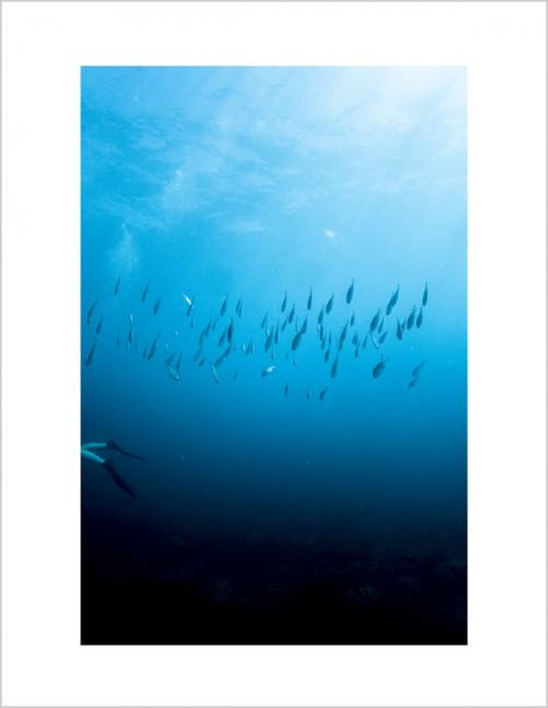 scuba to blog-3