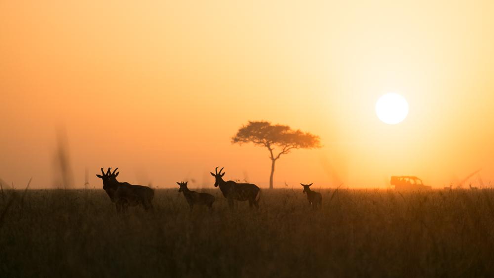 20140118-Kenya-8613-Edit