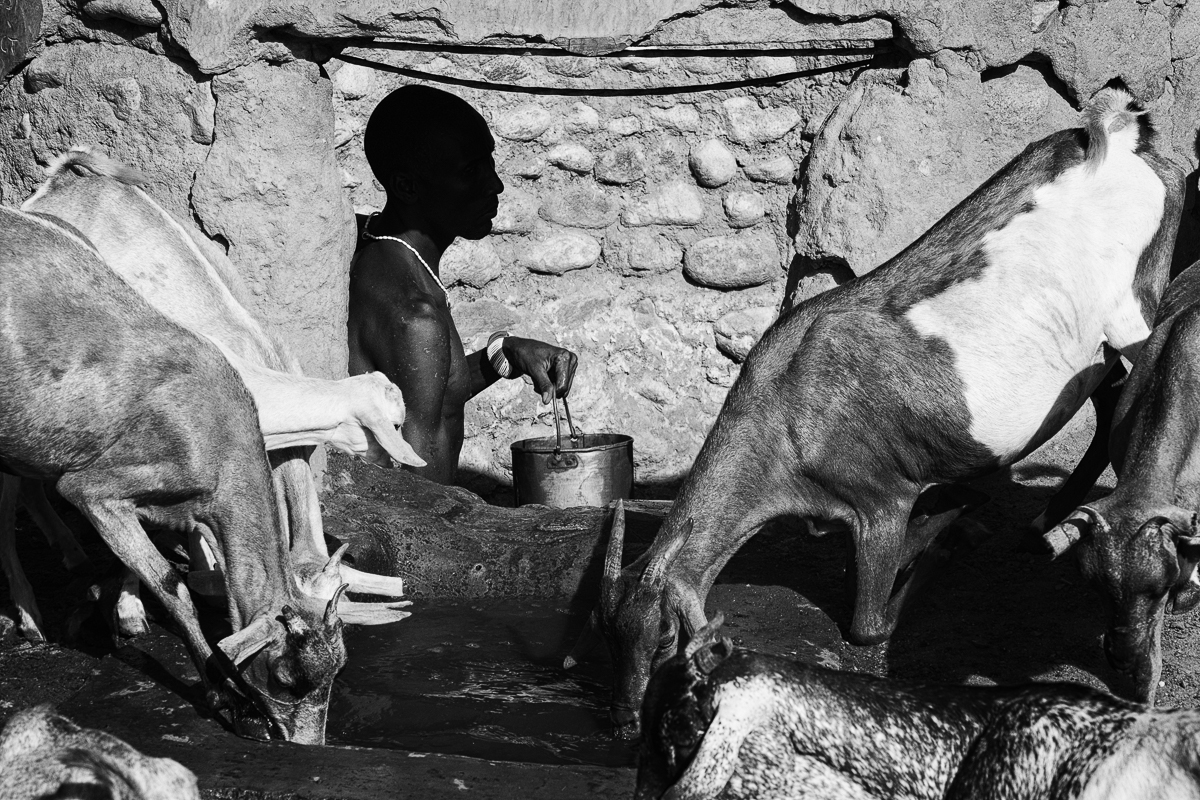 Herdsmen, Nauno Lemagas (top), Ldisiton Leshargole (middle), and Logira Lokuria (bottom) pull water from a drying well in the Ngurunit riverbed.
