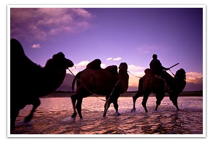 Postcard-Ladakh