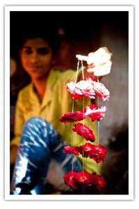 nizam-flowers2