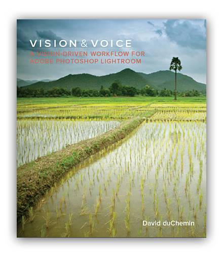 Vision&Voice-Cover