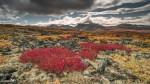 20130904-Yukon-6118-Edit
