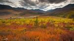20130905-Yukon-6544