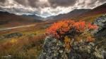 20130905-Yukon-6587