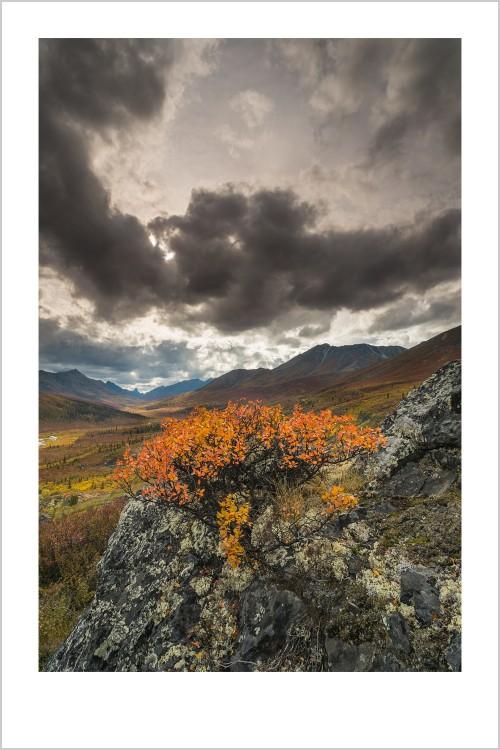 duchemin-20130905-Yukon-6598