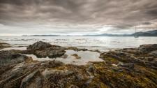 20130727-Haida-Gwaii-7097