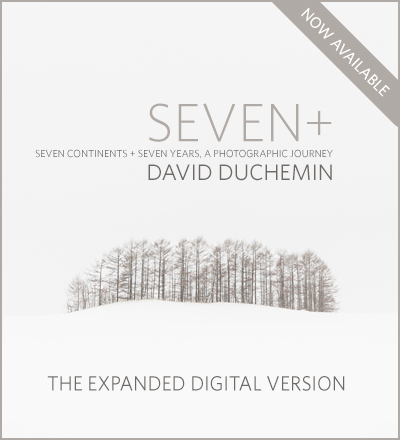 SEVEN+COVER-blog