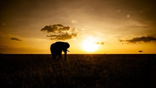 20140113-Kenya-1240
