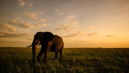 20140113-Kenya-1259