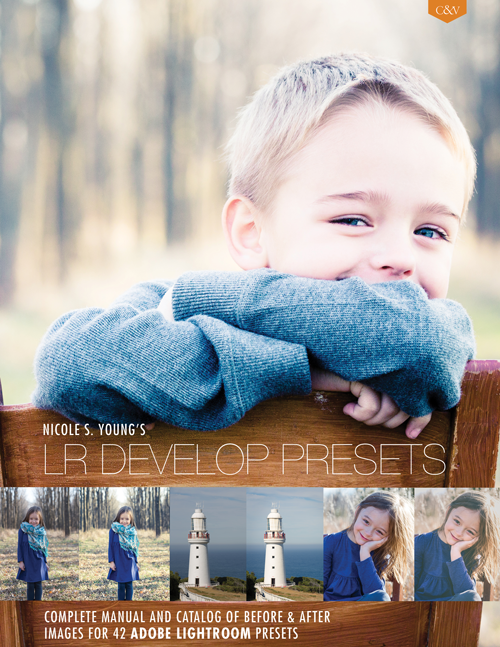 LR_Dev_Presets_Young_Cover_Medium